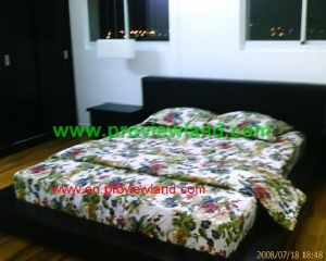 central garden in district 1for rent (10)