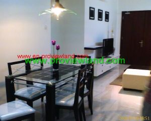 central garden in district 1for rent (11)