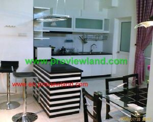 central garden in district 1for rent (9)